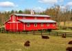 Day on the Farm!