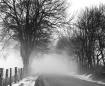 Foggy Farm Road