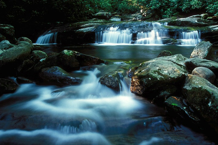 Smoky Mountain Stream - ID: 3654337 © Gary W. Potts