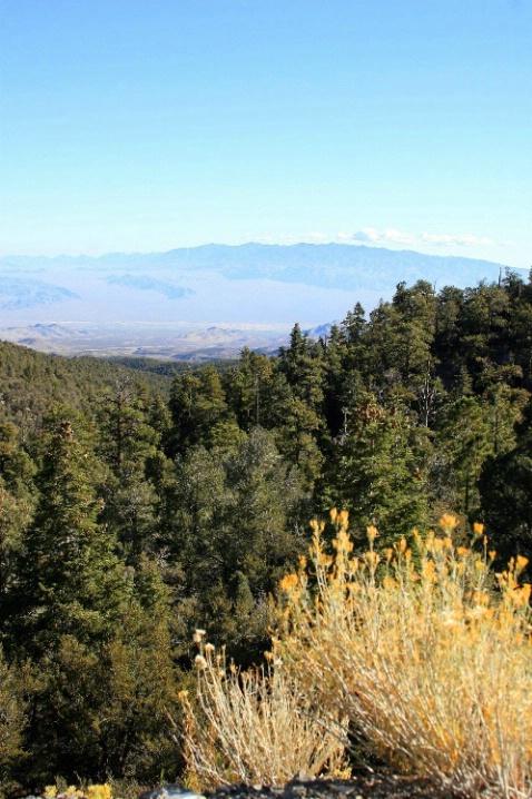 Arizona Landscape  7023 - ID: 3658260 © Mary Iacofano