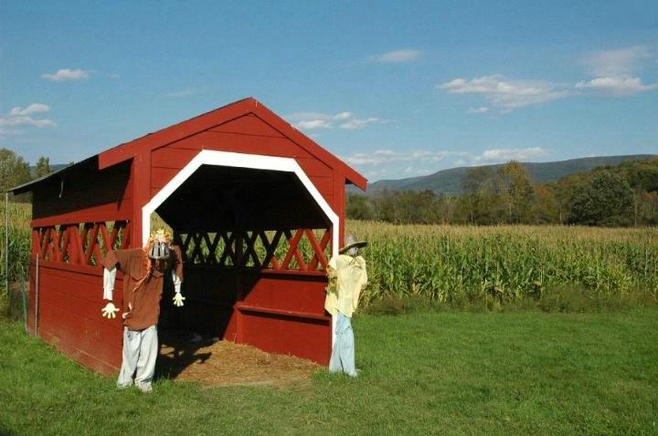Vermont Farm   VT 120 - ID: 3677227 © Beth E. Higgins