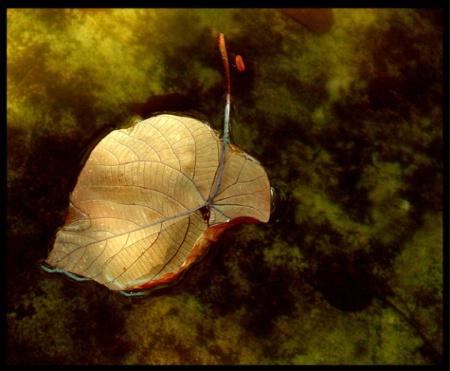 Floating memory