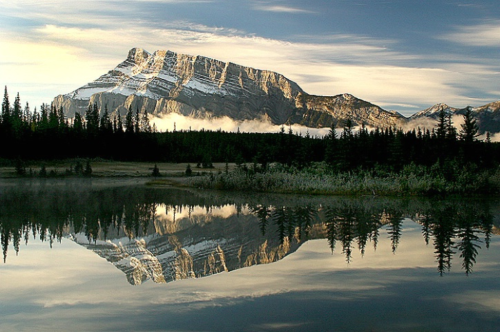 Nature's Reflection's