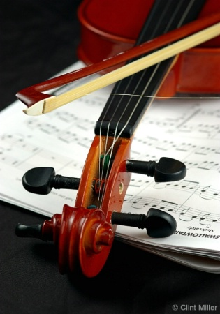 the violin_a work of art