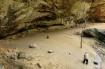 Ash Cave Photogra...