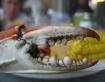 Louisiana Crab Cl...