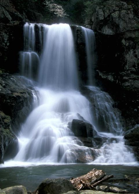 Spivey Falls - ID: 3841856 © Bob l. Peterson
