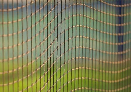 Batting Net 2