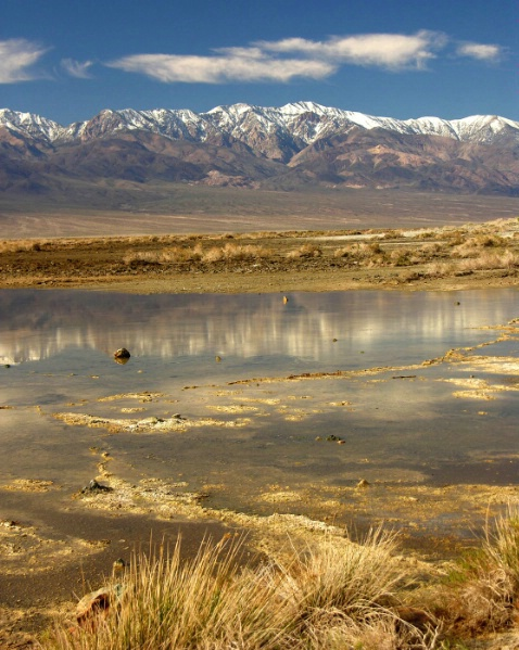 Panamint Reflection - ID: 3873883 © Leslie McLain