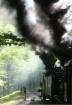 Twin Steam Column...
