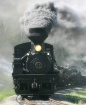 #11 Log Train