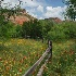 2Spring in Palo Duro Canyon - ID: 3930339 © Sherry Karr Adkins