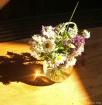 Springtime Reflec...