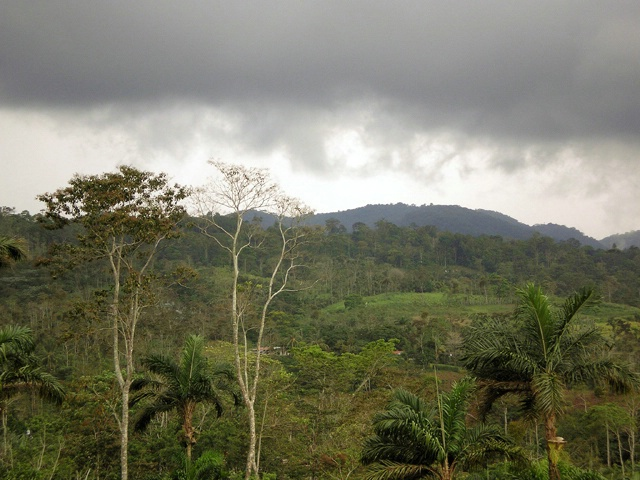 Brewing Storm in Costa Rica