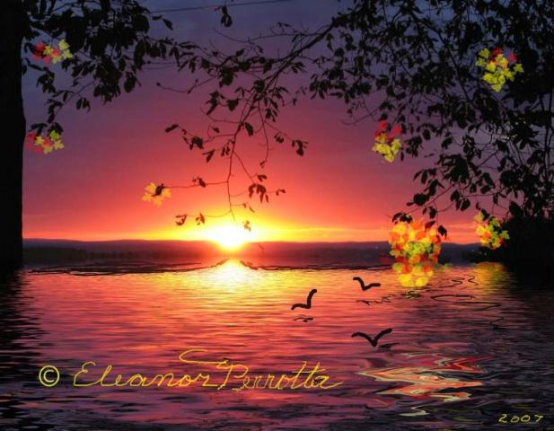 """Artistic Paradise"""
