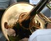 Brass Horn Reflec...
