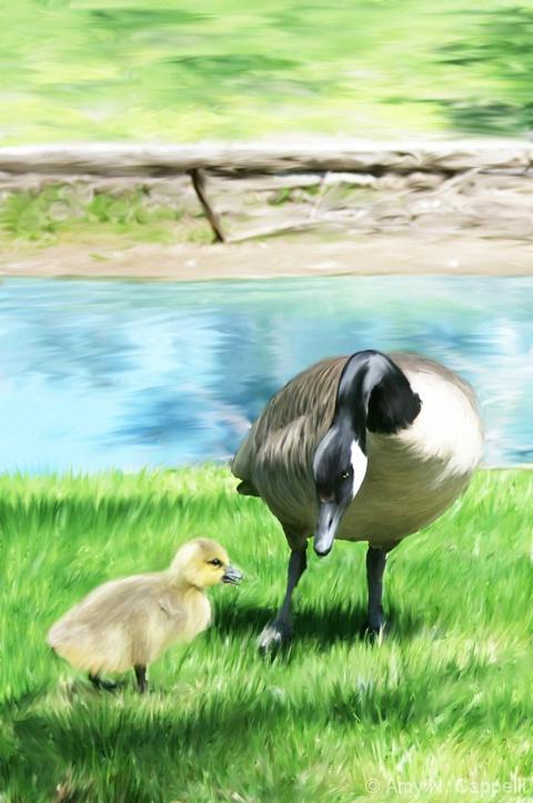 Concerned Mother Goose