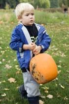 Pumpkins Are Heavy