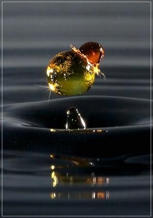 Unseen Sculptures- Bumblebee