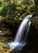 Grotto Falls, Gre...