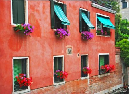 Dressed Windows, Venician Style