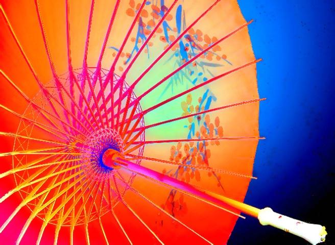 Parasol Picturesque