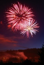 Fireworks: Man's and Nature's