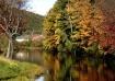 NH fall day