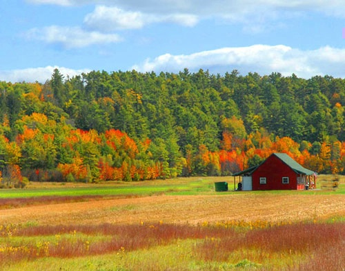 Red Barn. Naples, Maine. Harvest is over