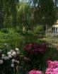 Monet's Garde...