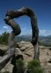 Long's Peak, ...