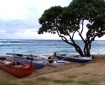Kauai Beach boats