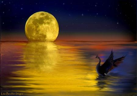 Moonrise Fantasy (2)