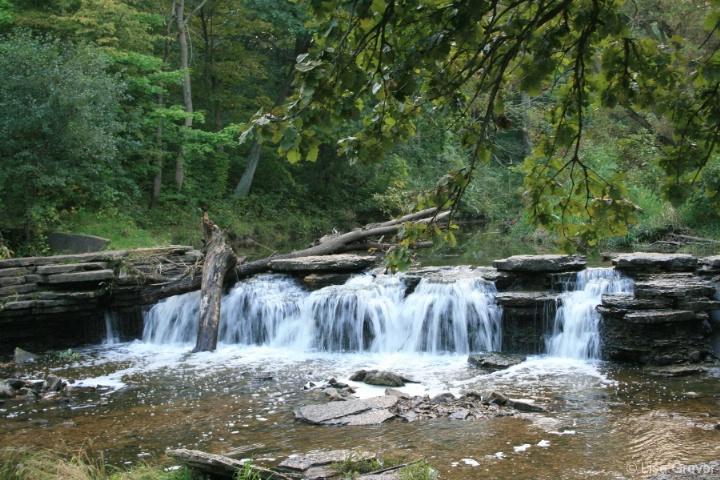 Waterfall at Waterfall Glen