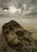 Sepia Seascape