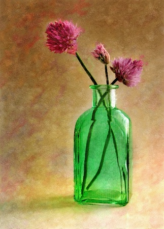 Painted Chives