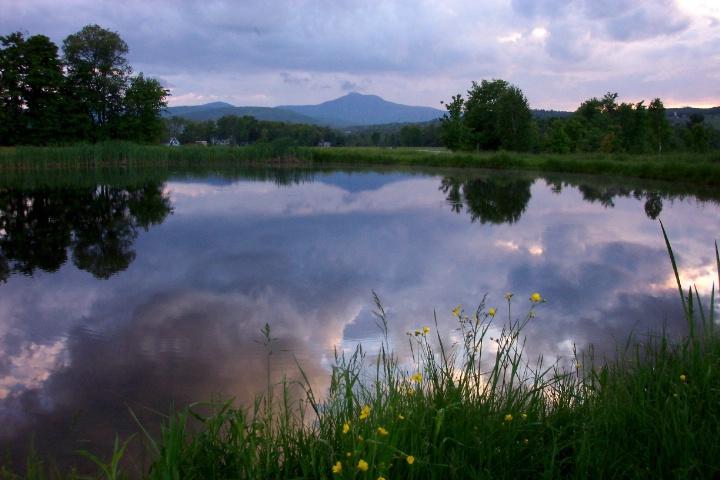 Vermont pond..