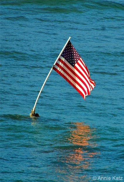 USA Flag - ID: 4390454 © Annie Katz