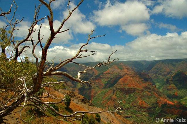 Waimea Canyon - ID: 4390458 © Annie Katz