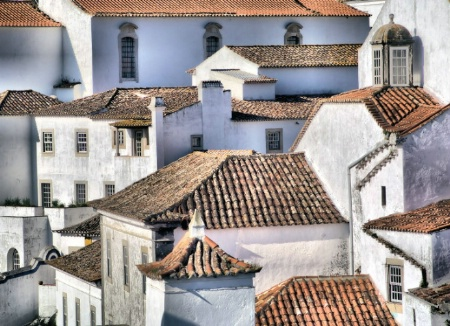 Clay Tile Medieval Roof Tops of Obidos