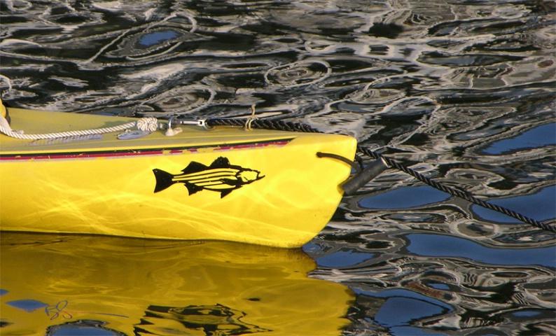 ~Yellow boat~