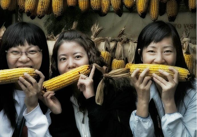 the taste of corn