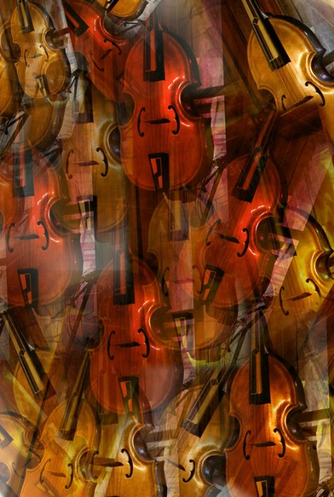 Violins for Braque