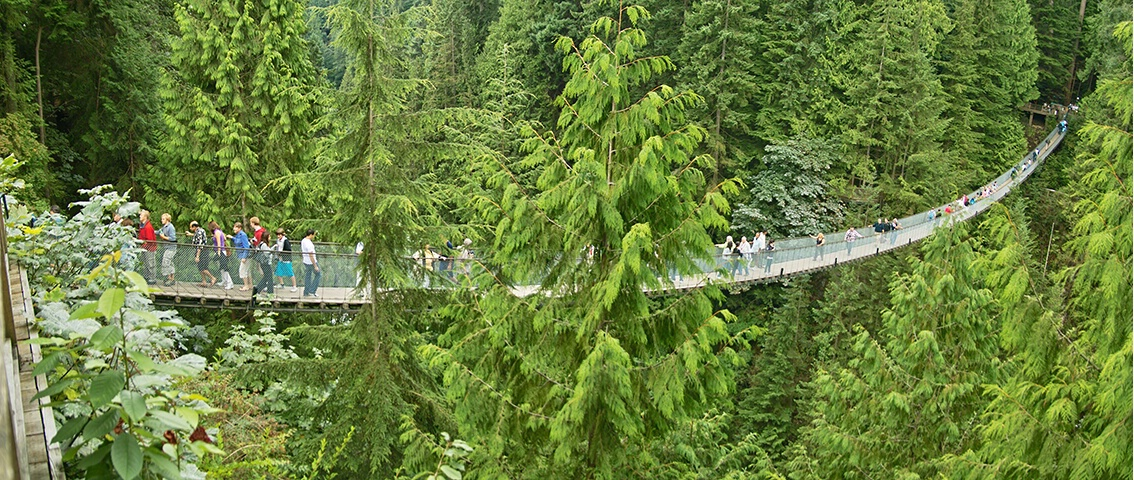 <b>Capilano Bridge Panorama</b>