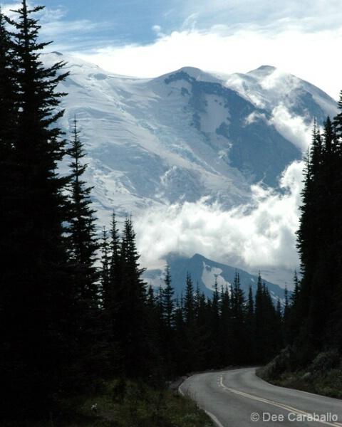 Road to Rainier II