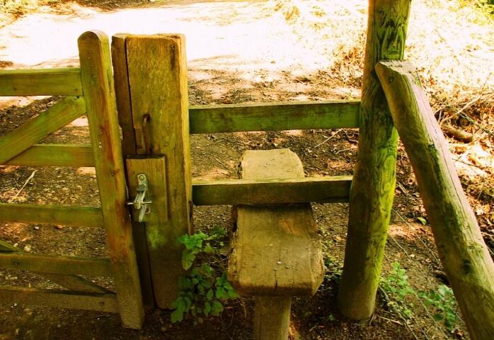 Woodland stile  - DONT