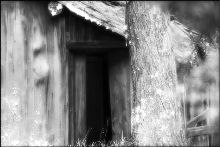 cabin_ghosts_1 - ID: 4619751 © Stuart May