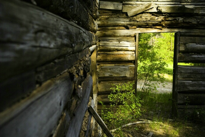 cabin_ghosts_3 - ID: 4619756 © Stuart May