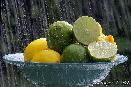 Lemons and Limes and Rain, Oh my!
