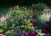 garden_spleandor_...